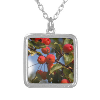 Fruits of a wild apple tree silver plated necklace