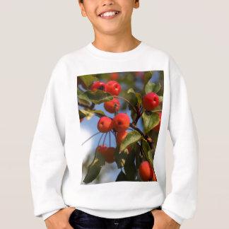 Fruits of a wild apple tree sweatshirt