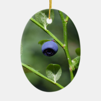 Fruits of the European blueberry Ceramic Ornament