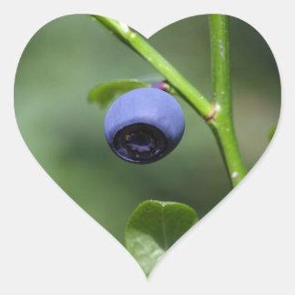 Fruits of the European blueberry Heart Sticker