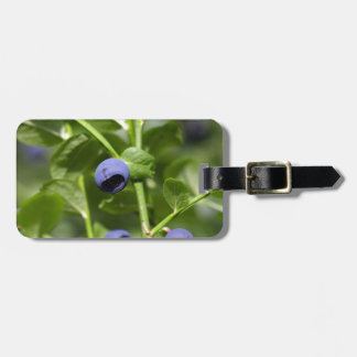 Fruits of the European blueberry Luggage Tag