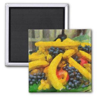 Fruits painting fridge magnet