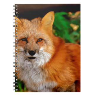 Fuchs Fox Animal Spiral Notebook