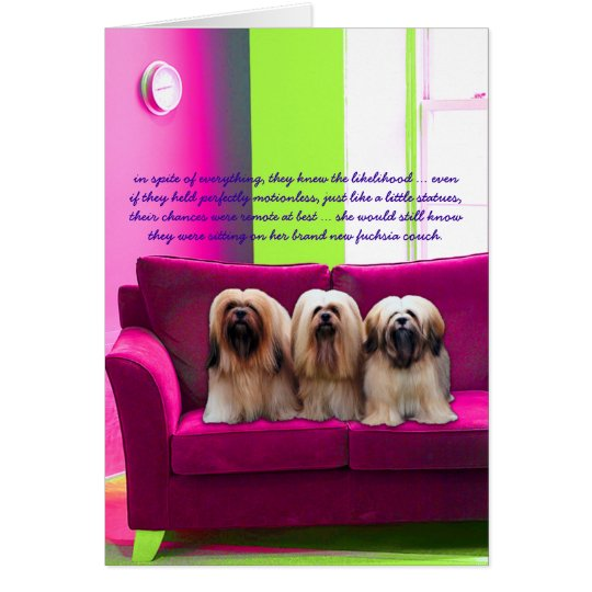 fuchsia couch card