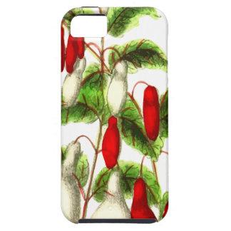 Fuchsia iPhone 5 Cases