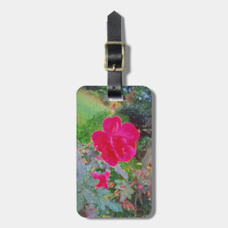 Fuchsia Pink Rose Flower in Bloom with Water Dew Bag Tag