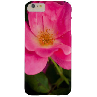 Fuchsia rose barely there iPhone 6 plus case