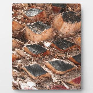 fuerte-wood Art Plaque