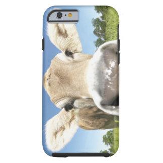 Fuessen, Bavaria, Germany Tough iPhone 6 Case