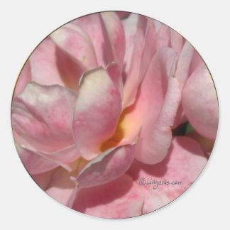 Full Bloom Rose Wedding Envelope Seal Round Sticker