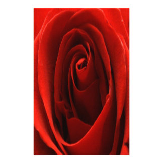 Full Color Classic Red Rose Stationery