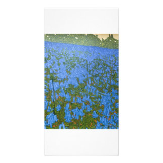 Full colour illustrated fine art photocard photo cards
