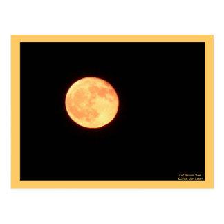 Full Harvest Moon Postcard