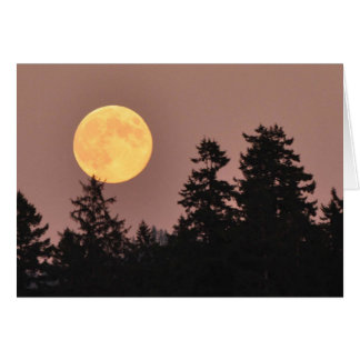 Full Moon August 2013 - Frameable Art Card