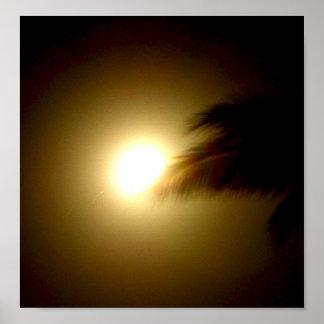 Full Moon & Palm Tree Poster