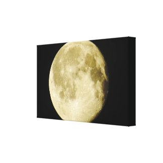 Full Moon Photo Canvas Print