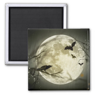 Full Moon with bats and Raven Fridge Magnets