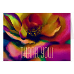 Full Rainbow Rose Thank You Note Cards