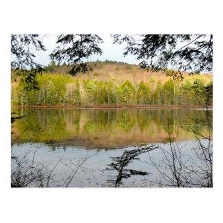 Fullam Pond Reflections Postcard