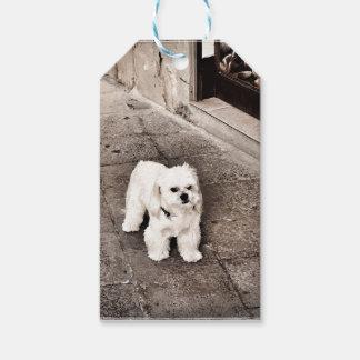 fullsizeoutput_c75 Crabby Dog Gift Tags
