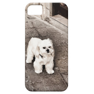 fullsizeoutput_c75 Crabby Dog iPhone 5 Cover