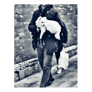fullsizeoutput_c78 Black and White Pomeranian Postcard