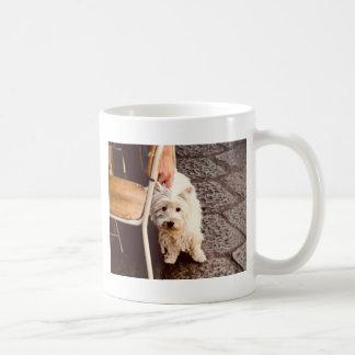 FullSizeRender 18Shy Dog Coffee Mug
