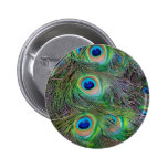 Fun and Cool peacock feather design 6 Cm Round Badge