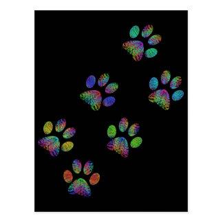 Fun animal paw prints. postcard