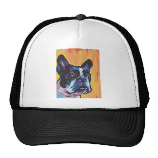 Fun Boston Terrier bright colorful Pop Art Cap