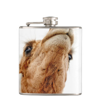 Fun Camel Photo Flask