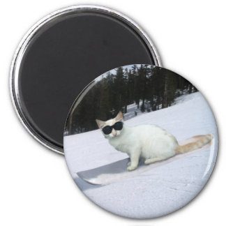 Fun Cat on a Snowboard Magnet
