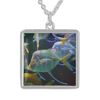 Fun Colorful Closeup View of  School Of Fish Sterling Silver Necklace