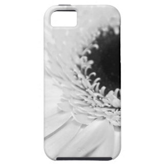 Fun Entertainment Gatherings Wedding Parties iPhone 5 Covers