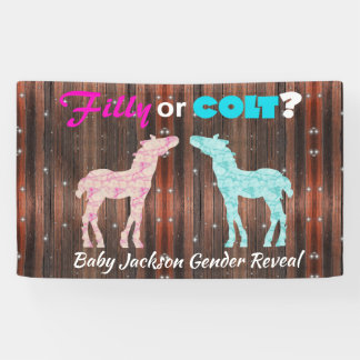 "Fun ""Filly or Colt"" Gender Reveal Banner"