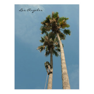Fun Los Angeles Postcard! Postcard