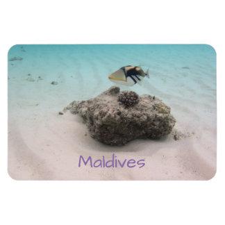 Fun Maldives Underwater Coral Fish Souvenir Magnet
