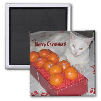 Fun Merry Christmas Magnet!