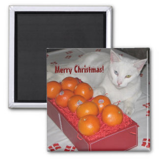 Fun Merry Christmas Magnet! Square Magnet