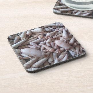 Fun Seashells Picture Coasters