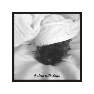 Fun wrapped canvas - I sleep with dogs Stretched Canvas Prints