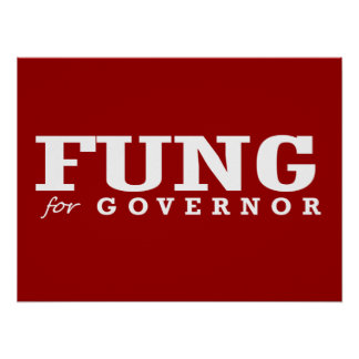 FUNG FOR GOVERNOR 2014 PRINT
