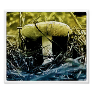 Fungi Watercolour - Art Print