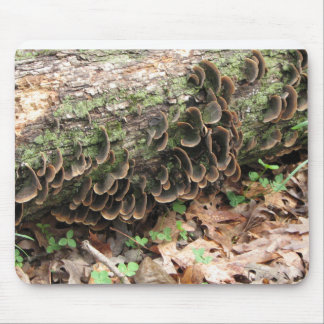 Fungus and Clover Mousepads