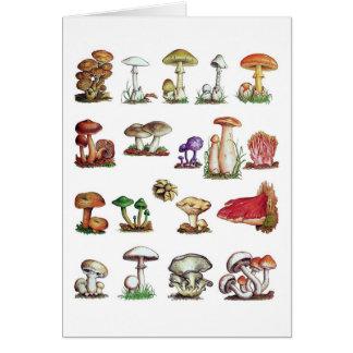 fungus card