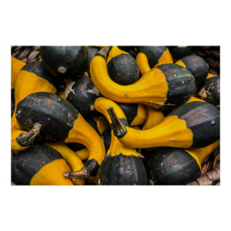 Funky black and yellow decorative pumpkins poster