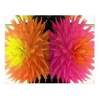 Funky Bright Orange & Pink Spiked Flowers Postcard