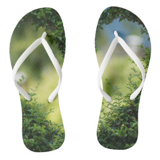 Funky flip flops secret garden