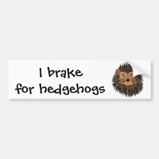 Funky Hedgehog Art Design Bumper Sticker