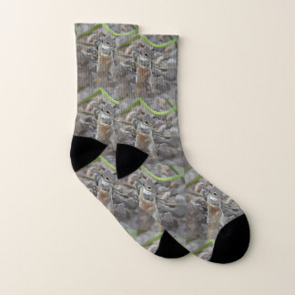 Funky Mikey Unisex Socks
